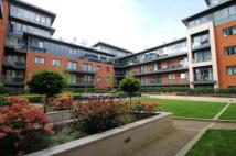 new Flat to rent in Putney Hill, Putney, SW15