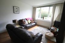 Kersfield Road Flat to rent