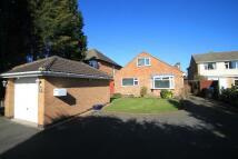 5 bedroom Detached Bungalow in Trafford Road, Hinckley