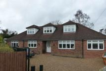 Detached Bungalow in Near Totteridge Common...