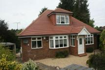 Detached Bungalow in The Drives, Totteridge.