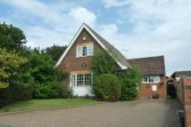 3 bed Detached Bungalow in Booker Common...