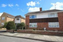 Dagmar Road semi detached house to rent