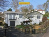 Detached Bungalow in Trevarrick Road...