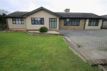 Detached Bungalow in Little Clacton
