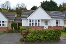 Terraced Bungalow for sale in Banham Drive, Sudbury