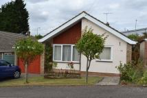 3 bed Detached Bungalow in Highfield Road, Sudbury