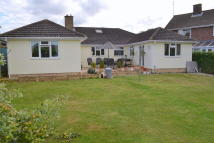 4 bedroom Detached Bungalow for sale in Bells Lane, Glemsford