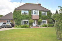 4 bed Detached house for sale in Leigh, Surrey