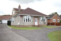 Detached Bungalow for sale in Badminton Road...