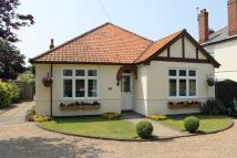 5 bed Detached Bungalow in 163 High Road...