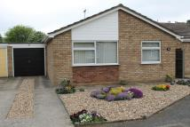 2 bed Detached Bungalow for sale in Springfield Avenue...