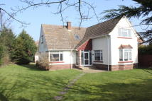 Detached house to rent in Cliff Road, Felixstowe...