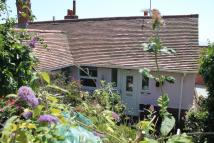 South Hill semi detached house for sale