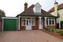 3 bedroom Detached Bungalow to rent in TUDDENHAM ROAD, Ipswich...