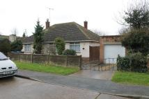 Detached Bungalow in Riby Road, Felixstowe...