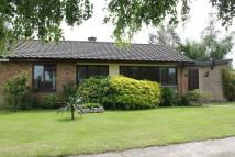 2 bed Semi-Detached Bungalow for sale in Park Lane, IP10