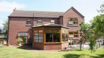 4 bed Detached house for sale in Squires Meadows...