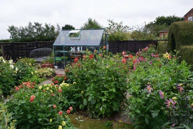garden showing...