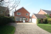 Detached property for sale in DOWNTON, SALISBURY...