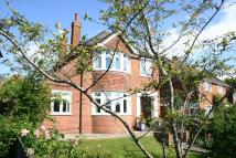 3 bed Detached house for sale in HARNHAM, SALISBURY...