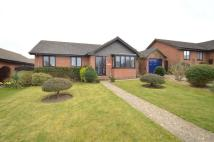 Detached Bungalow in 14 Selwood Road...