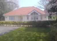 Bungalow to rent in Seafield Road...