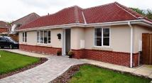 Bungalow to rent in Cranleigh Road...