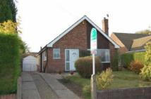 3 bedroom Detached Bungalow in Ashford Drive, Ravenshead