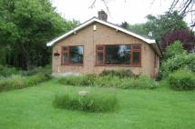 Detached Bungalow to rent in Kirklington Road...