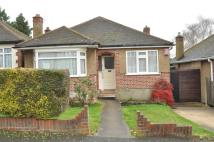 Bungalow in Cranbourne Road...