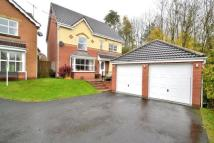 6 bedroom Detached property to rent in Sedgefield Walk...