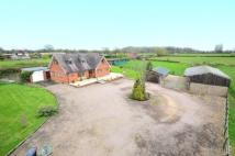 Equestrian Facility home in Flying Horse Lane...