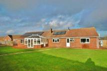 4 bed Semi-Detached Bungalow to rent in Broughton, Stockbridge