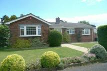 Detached Bungalow in Olivers Battery...