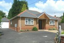 Colden Common Detached Bungalow for sale