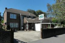 4 bedroom Detached house in Highfield, Southampton