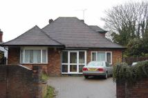 4 bed Detached Bungalow to rent in Wardown Park Area