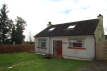 4 bed Detached home in Faifley Holding...