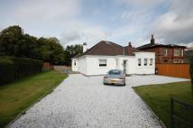 3 bed Detached Bungalow for sale in Stevenson Street...
