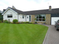 Detached Bungalow for sale in The Hazels, Wilpshire