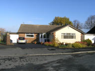 4 bed Detached Bungalow in The Hazels, Salesbury...