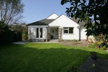 3 bed Bungalow to rent in Carwinion Lane - Mawnan...