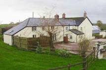 Detached house for sale in Pyworthy, Devon