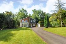 Detached home to rent in St Leonards Hill...