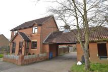 2 bed semi detached house to rent in Golding Way, Glemsford