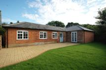 Detached Bungalow to rent in Bury Road, Lavenham