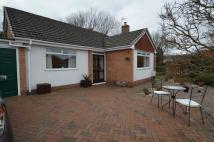 Detached Bungalow in Ffordd Tirion, Mold