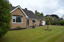 Bungalow in Black Brook, Mold