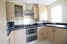 Flat to rent in Gilbert White Close...